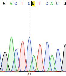 dna sequence analysis chromatogram
