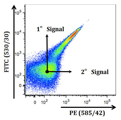 An Introduction to Spectral Overlap and Compensation Protocols in Flow Cytometry