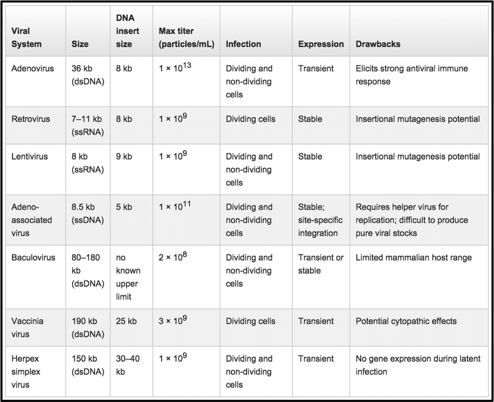 Comparing Viral Vector Expression Systems Bitesize Bio